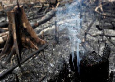 LEI: Proibição de queimadas por 120 dias deve ser assinada semana que vem