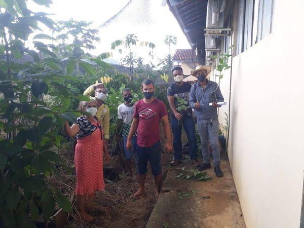 BURITIS: Secretaria Municipal de Meio Ambiente e Sustentabilidade (SEMMAS), em parceria com a Escola Maria Elvandas de Siqueira, faz doações de mudas de ipês para recuperação de áreas degradadas a beira de córregos.
