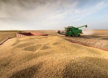 2020/2021: Colheita de soja do Brasil avança para 15% da área, mas mantém atraso