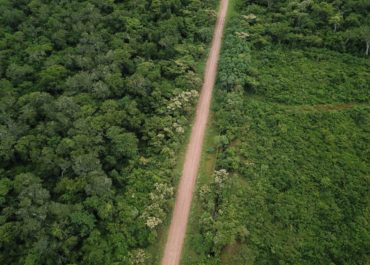 PERIGO: Projetos de estradas na Amazônia podem desmatar 2,4 milhões de hectares nos próximos 20 anos